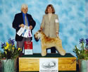 4/13/06 - 5pt - Northern California Terrier Assoc (Sacramento CA) - Fred Ferris