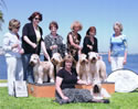 6/26/10 - SCWTCA Nat'l Roving Specialty  (Long Beach KC) - Peggy Meisel McIlwaine