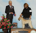 01/17/2014 - Dog Fanciers of OR (Portland OR) - Robert Hutton